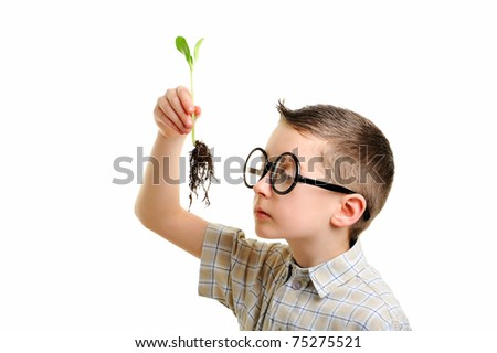 Little cute geeky child investigating green plant in the soil - stock photo