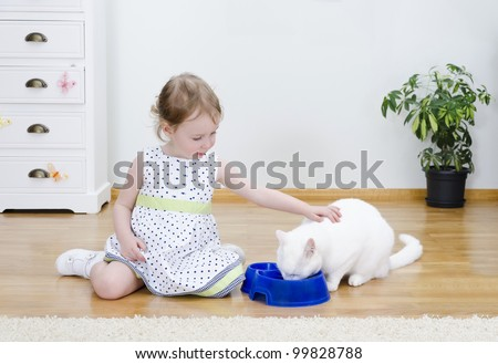 Little cute girl feeding a white cat - stock photo