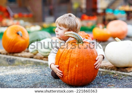 Little cute kid boy sitting with huge pumpkin on halloween or thanksgiving harvest festival or patch, outdoors