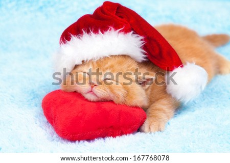 Little cute kitten wearing Santa's hat slipping on the heart-shaped pillow - stock photo