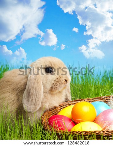 Little Easter bunny and Easter eggs on green grass - stock photo