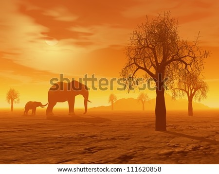 Little elephant holding its mum's queue in the savannah with baobabs by sunset - stock photo
