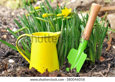 little gardening tools in front of narcissus in garden  - stock photo