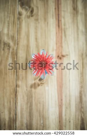 Little Gerbera flower on wooden table, Thailand - stock photo