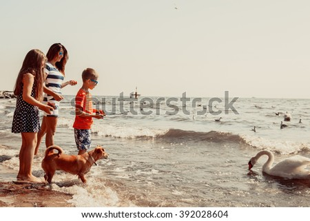 Little girl and boy children kids and mother parent having fun with swan on beach at sea. Summer vacation holidays relax.