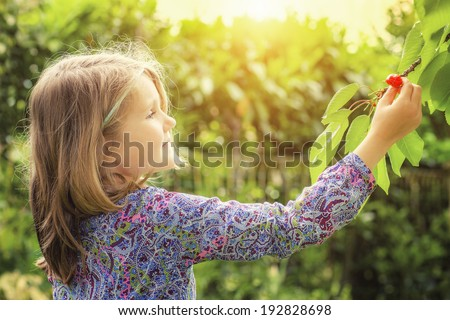 little girl and cherry tree with summer sun in background - stock photo