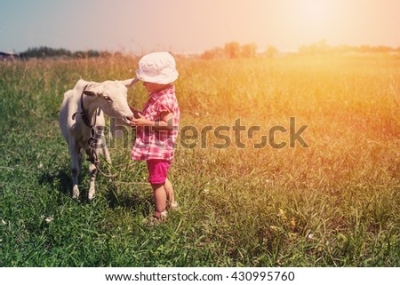Little girl child with white goat outdoor. Summer meadow, childhood in nature - stock photo