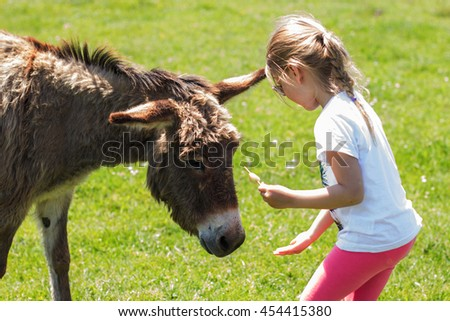 Little girl feeding donkey in the green field.