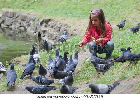 Little girl feeding pigeons in park - stock photo