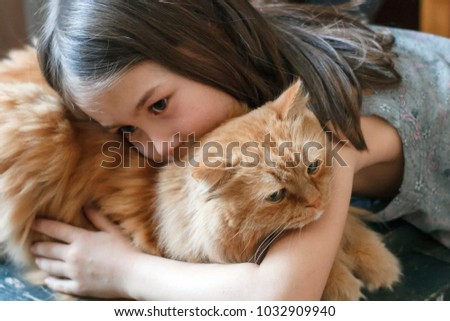 Little girl gently hugs a big red cat