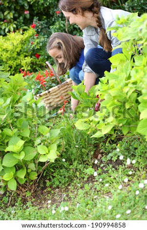 Little girl helping her mother to do gardening - stock photo