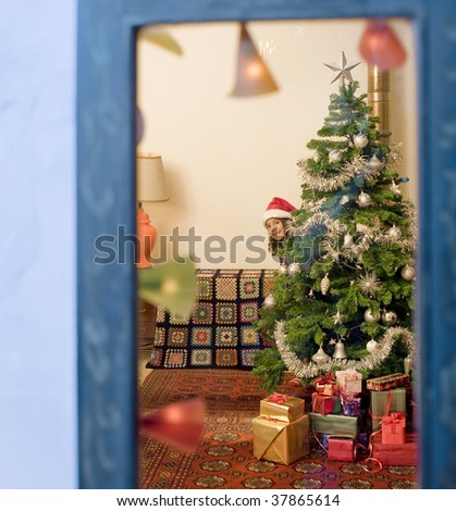 little girl hiding behind a Christmas tree watched from a window