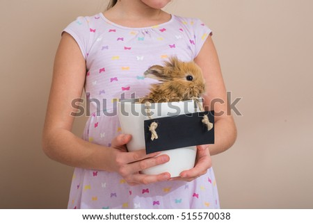 little girl holding rabbit in flowerpot