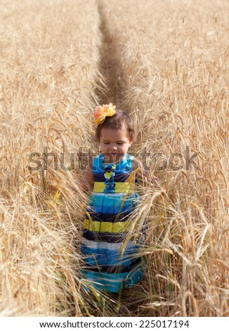 little girl in a summer sundress goes across the field of wheat - stock photo