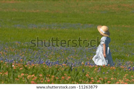 Little girl in field of bluebonnets and indian painbrush - stock photo