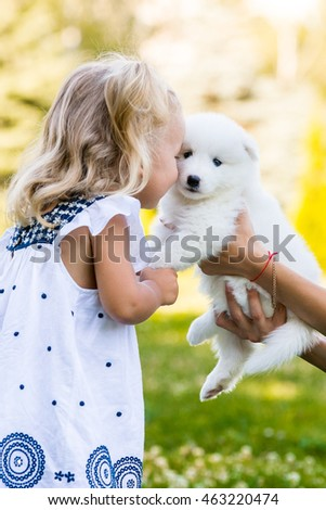 little girl kissing her puppy Samoyed breed in the park on the grass