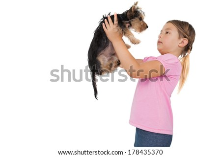 Little girl lifting up yorkshire terrier puppy on white background - stock photo