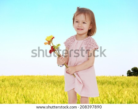 little girl picking flowers in a field.the concept of childhood and joy, teens - stock photo