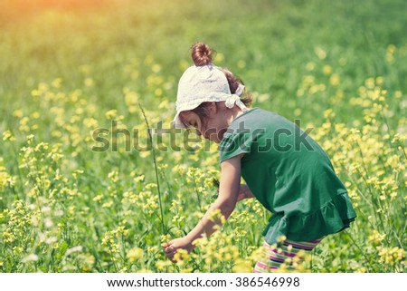 Little girl picking flowers in the meadow - stock photo