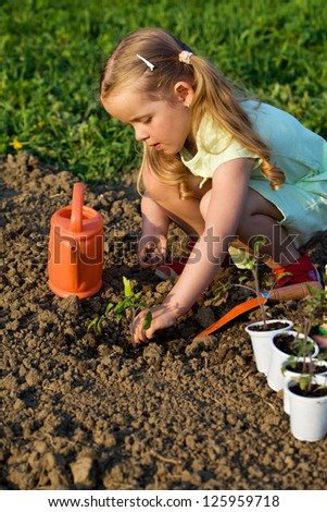 Little girl planting tomato seedlings in spring time - growing your food - stock photo