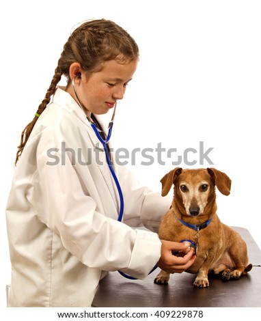 Little girl playing a veterinarian/ Child Playing Veterinarian/  Young Veterinarian In The Works