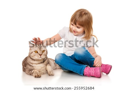 Little girl playing with a British cat - stock photo
