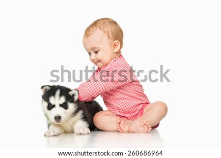 Little girl playing with a puppy husky, isolated on white - stock photo