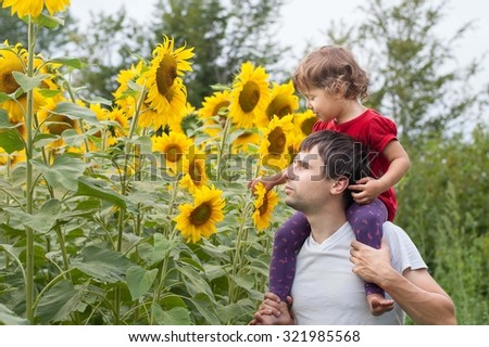 little girl sitting father shoulder  and looks at the sunflower - stock photo