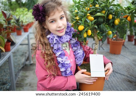 Little girl standing next to a small tree citrus cumquat in the greenhouse  - stock photo