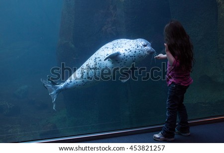 Little Girl touches harbor seal and becomes friends at the aquarium