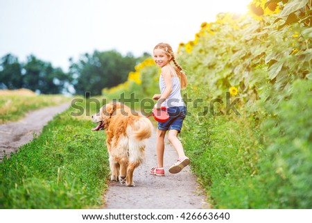 little girl walks on the leash with a golden retriever