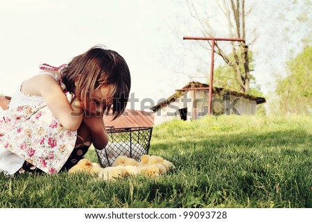 Little girl watching Buff Orpington chicks  with chicken coop and barn in far background. Extreme shallow depth of field with some blur on lower portion of image. - stock photo