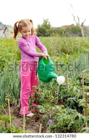 Little girl watering plants in a kitchen-garden - stock photo