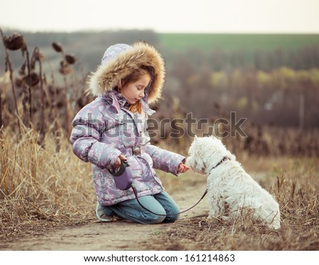 little girl with her dog breed White Terrier walking in autumn