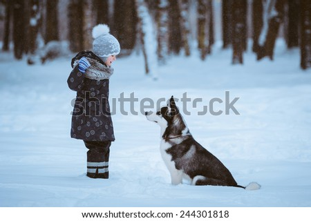 little girl with Husky dog on the snow, winter time - stock photo