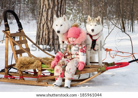 little girl with husky dogs in winter park - stock photo