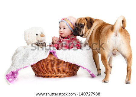little girl with the big dog. Baby girl and her best friend. - stock photo
