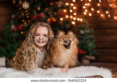 Little girl with two dog spitz - stock photo