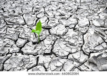 drought planting pond waterfall ideas drought stock images royalty free images vectors shutterstock