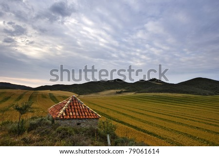 Little house on agricultural field - stock photo