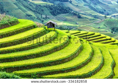 Little House on the terraced fields protruding government vast blue and gold across the hills. It was voted as the top ten in the world beautiful landscapes created by man - stock photo