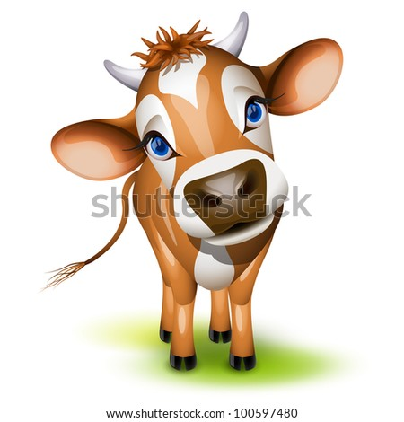 Little jersey cow with a cocked head and blue eyes - stock photo