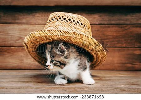 Little kitten under the straw hat on wooden background - stock photo
