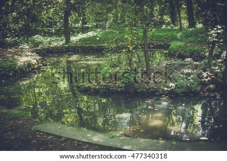 Little lake in the forest with small stone island. On island grow green plants and trees and beauty reflected forest in water - vintage