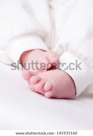 little legs isolated on a white background
