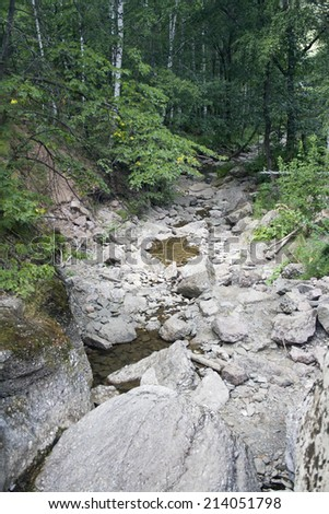 Little mountain river in the wild forest. Travel to Urals mountains. White birch tree under water