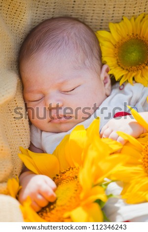 little newborn girl sleeps in surrounded with sunflowers