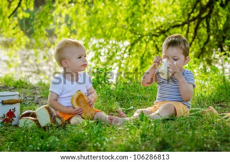 Little nice boys drinking milk on picnic