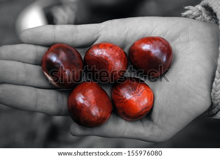 Little palm with chestnuts/Chestnuts/Palm with chestnuts