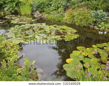 Little pond in Danish country garden during a silent rain.